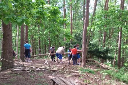 Body_WC15_woods